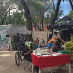 Senado pide a CDMX retirar vendimia de marihuana afuera de sus instalaciones