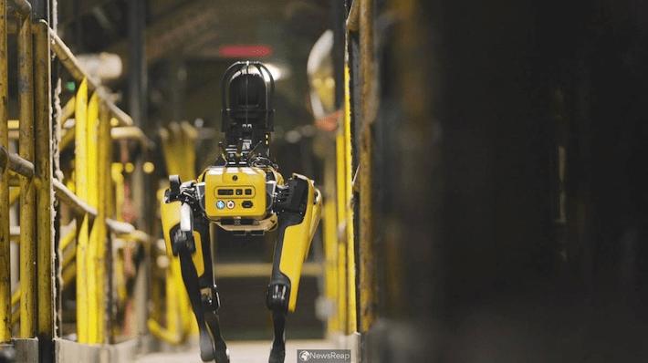 Ejercito de Francia prueba perro robot SPOT